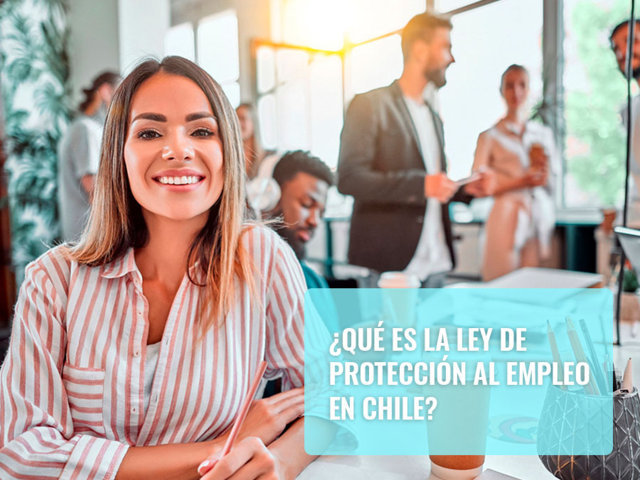 Qué es la Ley de Protección al Empleo en Chile